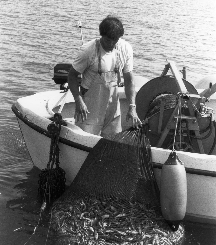 Kalastaja Vesijärvellä